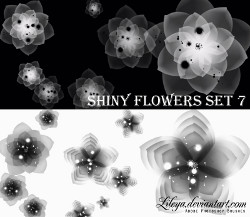 ShinyFlowers.jpg